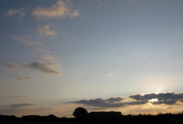 Glider in the Clouds